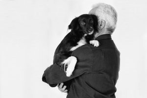 Amistad perro-hombre